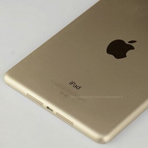 ipad-gold-lear-thum