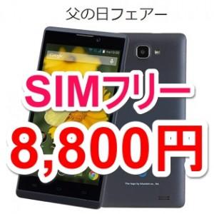 bnp-500k-sale201506-thum