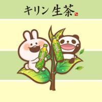 kisekae-panda