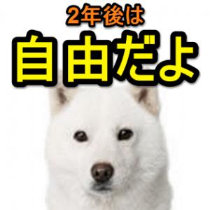 3nenme-iyakukin-huyou-jidoukoushin-nashi-plan-thum