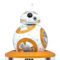 bb8-radicon-thum2