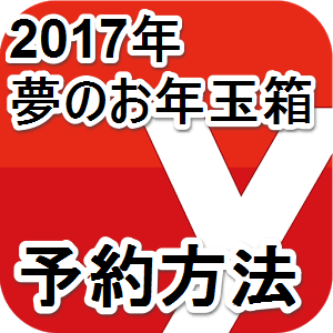 fukubukuro-yodobashi-2017