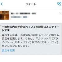 hutekisetsu-keikoku-filter-tweet-mirenaia-thum