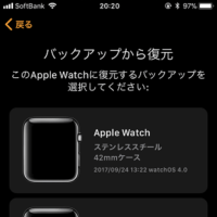 apple-watch-backup-sakujyo
