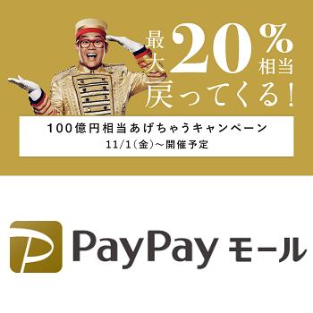 paypay モール で 100 億 円 相当 あげ ちゃう キャンペーン