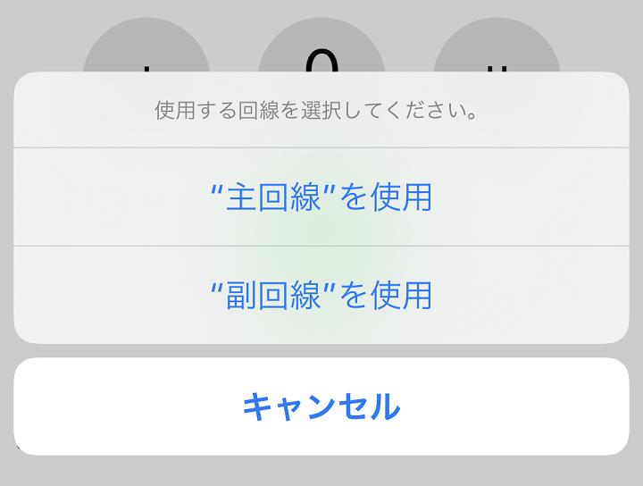 楽天 iphone esim